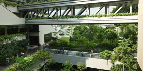 Biophilic Healthcare Design in Khoo Teck Puat Hospital